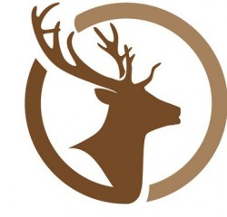 deer-logo-template-icon-design-vector-14599584_22222